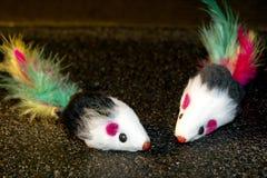 Zabawkarska mysz dla kotów Zdjęcie Royalty Free