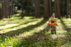 Zabawkarska strach wrona w trawie w lesie zdjęcie stock