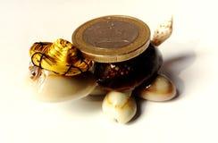 Zabawkarski żółw z euro monetą zdjęcie royalty free