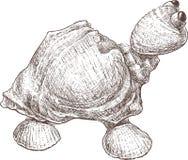 Zabawkarski żółw ilustracja wektor