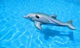 Zabawkarski gumowy delfin Fotografia Stock