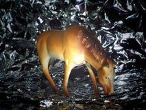 Zabawkarski koń Zdjęcia Royalty Free