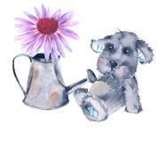 Zabawkarski pies i kwiat w podlewanie puszce pojedynczy białe tło Zdjęcie Royalty Free