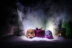 Zabawkarski pies - symbol nowy rok pod śniegiem przeciw tłu jedlinowe gałąź Zabawka pies jako symbol 2018 nowy rok Obraz Royalty Free