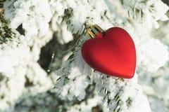 Zabawkarski serce kłaść na sosnowy śnieżny drzewny plenerowym Zdjęcia Royalty Free