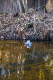 Zabawkarski statku żeglowanie w rzece przy zmierzchem fotografia royalty free