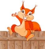 zabawna wiewiórka Fotografia Royalty Free