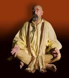 zabawne guru obraz royalty free