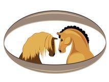 zabawne konia Obrazy Royalty Free