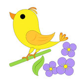 zabawne ptak Zdjęcie Royalty Free