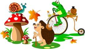 zabawne zwierząt Fotografia Royalty Free