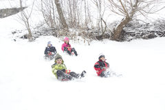 zabawnie kierowcy sledge zimy Obraz Royalty Free