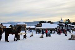 zabawnie kierowcy sledge zimy Aktywność w muzeum Drewniana architektura pod otwartym niebem Rosja, Syberia Taltsy Irkutsk region Zdjęcia Royalty Free