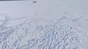 zabawnie kierowcy sledge zimy Ludzie na zamarzniętym jeziorze angażują w paragliding i zima połowie