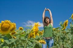 zabawnie pola słonecznik Obraz Royalty Free
