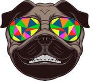 zabawny pies Obraz Royalty Free
