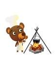 Zabawy Dziki Niedźwiadkowy łasowanie Fotografia Royalty Free