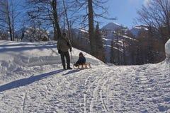 zabawy rodzinna zima Fotografia Royalty Free