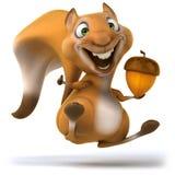 Zabawy wiewiórka Obraz Stock
