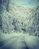 Zabljak, inverno Fotografia Stock Libera da Diritti
