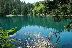 Zaboj lake. Zabojsko lake surrounded by dense coniferous and beech forests, located in the northeastern part of Sinjajevine at an altitude of 1,477 meters Stock Image