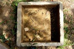 Zacementowany zbiornik wodny dla cattles Zdjęcia Royalty Free