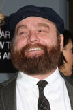 Zach Galifianakis Royalty Free Stock Photos