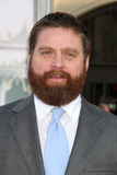 Zach Galifianakis Royalty Free Stock Photo