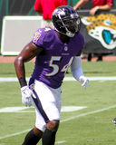 Zachary Orr Stock Images