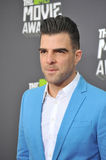 Zachary Quinto Royalty Free Stock Photos