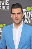 Zachary Quinto Royalty Free Stock Photography
