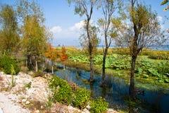 Zachodni Drogowy Erhai jezioro Zdjęcie Royalty Free