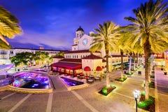zachodni Florida plażowa palma Obrazy Royalty Free