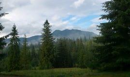 zachodni gór tatras Obrazy Royalty Free