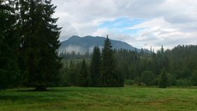 zachodni gór tatras Fotografia Stock