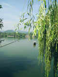 Zachodni Hangzhou Jezioro Fotografia Stock