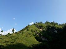Zachodni Nepal Greenery Zdjęcie Stock