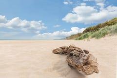 Zachodni plażowy darß przegapia morze obraz stock