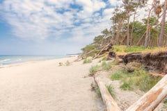 Zachodni plażowy darß przegapia morze fotografia royalty free