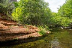 Zachodnia Jasna zatoczka Arizona w wiośnie zdjęcie royalty free