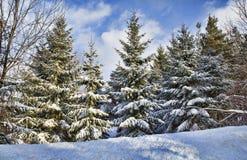Zachodnia Nowy Jork zima zdjęcia stock