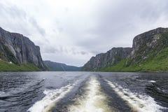 Zachodniego strumyka Gros Morne Stawowy park narodowy, wodołaz obrazy royalty free