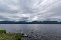 Zachodniego strumyka Gros Morne Stawowy park narodowy, wodołaz fotografia royalty free