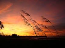 zachodzącego słońca Obraz Stock
