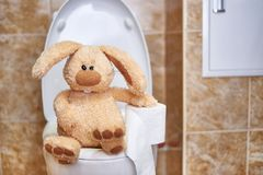 Zacht gevuld konijn met toiletpapier in het toilet Concept spijsverteringsproblemen De ruimte van het exemplaar royalty-vrije stock afbeeldingen