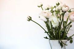 Zacht huisdecor, witte kruik, vaas met witte kleine bloemen op een witte uitstekende muurachtergrond en op een houten plank stock afbeelding