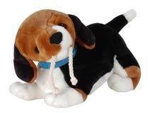 Zacht puppy. Geïsoleerd Royalty-vrije Stock Afbeelding