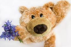 Zacht stuk speelgoed de beer Stock Afbeeldingen