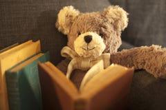 Zacht Stuk speelgoed Teddy Royalty-vrije Stock Foto's