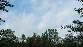Zachte blauwe hemel van daling, timelapse stock videobeelden